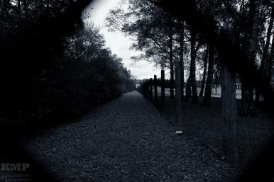 Der Zaun von aussen gesehen