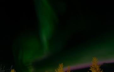 Aurora borealis über Reykjavik