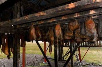 Getrocknetes Haifischfleisch