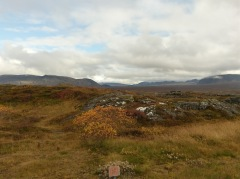 Þingvellir, der Grossen Geysir und Gullfoss
