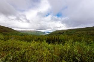 Blick auf den Fjord vom Hotel Gratangsfjellet aus