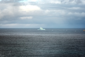 Eisberg am Eingang des Eyjafjörður