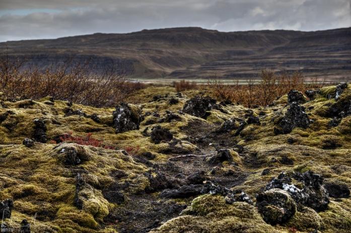 Lavafeld bei Grábrók