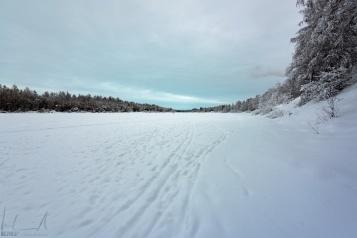 Der Fluss Ivalojoki hinter dem Hotel Ivalo