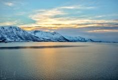 6. Tag - Die Vesterålen & Lofoten