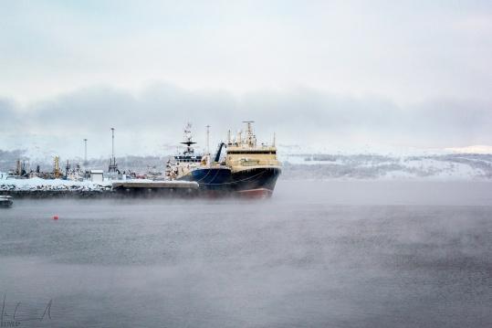 Der Hafen von Kirkenes