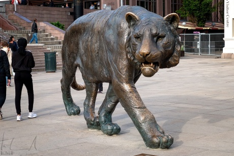 Tigeren på Jernbanetorget
