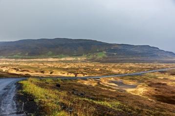 Die goldenen Sanddünen Patreksfjörður