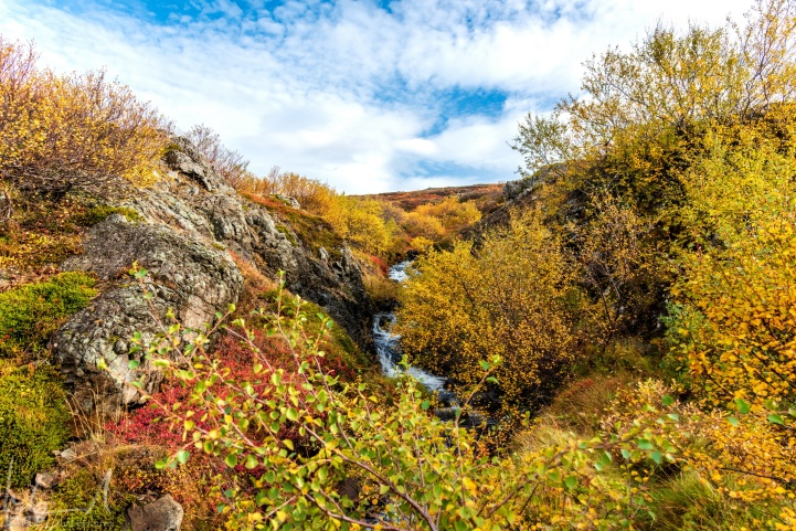 Herbst auf den Westfjorden